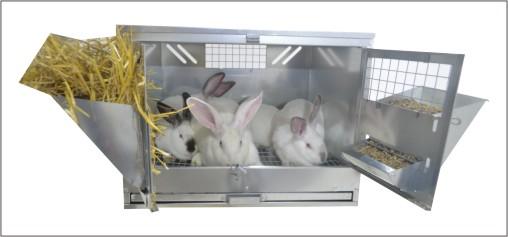 Клетки для кроликов для откорма